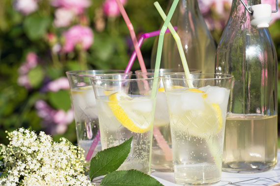 Elderflower cordial (syrup) makes a lovely refreshing drink