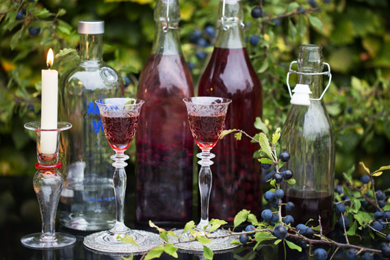 Sloe snaps made using sloes and vodka