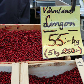 Lingonberries from Värmland in Sweden